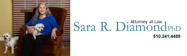 Sara Diamond Attorney